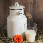 La Leche- All about milk!